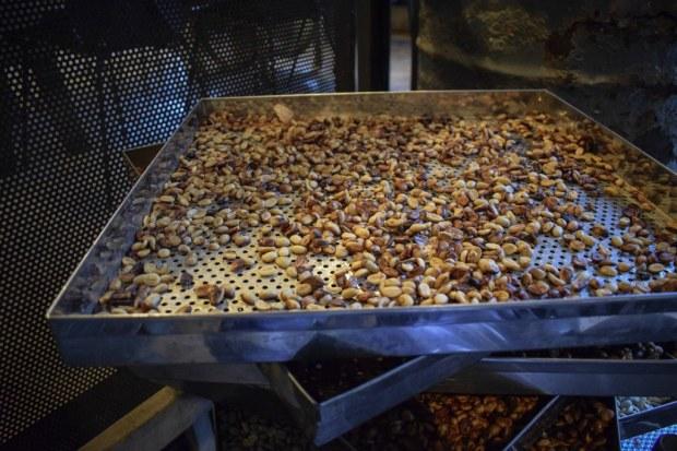 La Viet Da Lat honey processed beans
